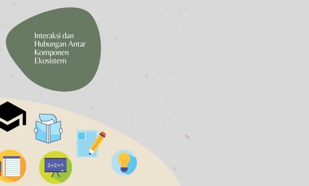 Interaksi dan Hubungan Antar Komponen Ekosistem