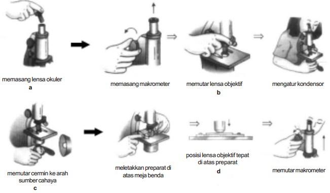 Bagian-bagian Mikroskop